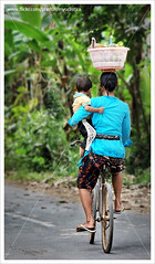 A Circus of Life (myudistira) Tags: boy bali woman love dedication work women photographer hard mother culture made balance 2008 freelance adat budaya balinese fotografer unik yudis baliview baliphotographer yudistira colorphotoaward myudistira madeyudistira yudist