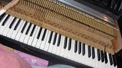 Coming Along (fave :)) Tags: wood electric vintage keys piano fender rhodes rebuilt markia