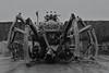 La Machine - La Princesse (willposh) Tags: england blackandwhite monochrome liverpool giant spider mechanical 2008 capitalofculture2008 lamachine laprincess