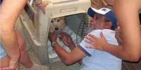 Kinship Circle - 2008-09-10 - Animal Evacuations In A Post-Katrina World 07