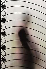 -- (Tilak Haria) Tags: india grill shelter glassdoor silvassa abigfave pratibimbsangli betterthangood opacglassdoor