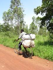 Kohletransport