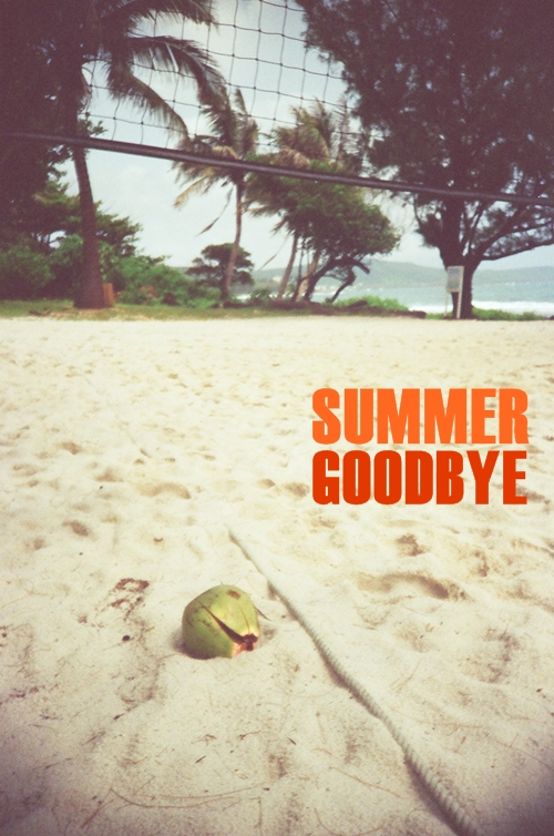 summer goodbye