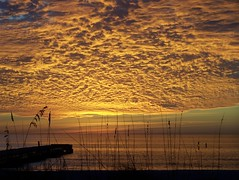 yellow sky (theredneckhippie) Tags: sunset orange beach fl bradenton yellowsky digitalcameraclub mywinners natureandnothingelse 100commentgroup