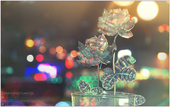 Crystal Rosa Chinensis () Tags: light rose night nikon crystal bokeh explore fictitious hbw goldstaraward luvmmy