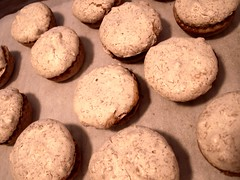 Hertzog Cookies (Mamluke) Tags: winter party food holiday texture textura home cookies dessert sweet coconut hiver solstice wintersolstice sweets apricot sheet invierno snacks inverno shortbread meringue beschaffenheit hertzog textuur solsticio sonnenwende solstizio mamluke zonnestilstand hertzogcookies