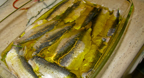 Spanish sardines recipes