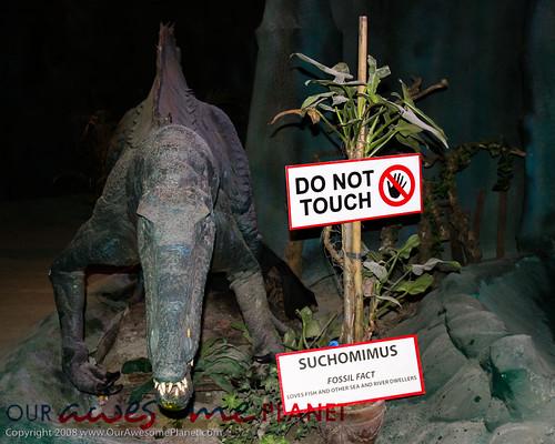 Dino's Alive-35