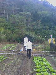 20081229_051