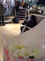 freesias and fashions. (urzzz) Tags: nyc newyorkcity soho uniqlo clothing clothingshop freesias flowers bouquet