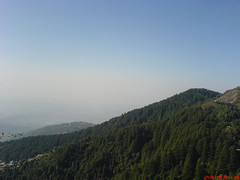 MacLeodganj and Dharamsala while heading to Triund,  Triund Hill (Triund Baba ) Tags: blue sky india mountains nature clouds geotagged god peaceful uphill mighty himachalpradesh hillwalking pollutionfree sonyericssonw810i solohiking platinumphoto ourplanet wildflowerstrees greencleanfutureplanetbeautifuldhauladhar dharamsalamacleoadganj savebeautifulearth
