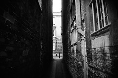 Lane contemplation (Jim Davies) Tags: film analog picasa oxford r1 analogue ricoh ricohr1 veebotique
