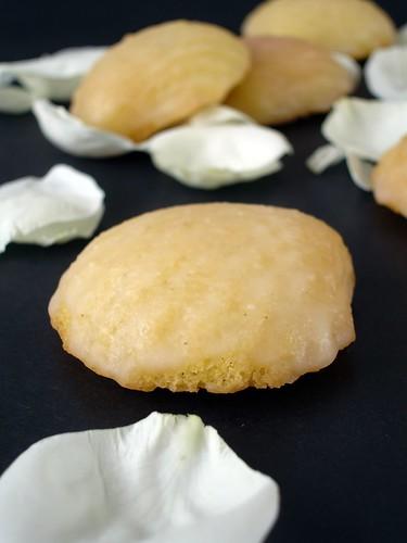 Vanilla and rosewater madeleines