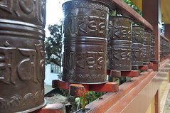 Tibetan Prayer Wheels, Darjeeling India (Laura Dunn-Mark) Tags: travel india mountains wheel religious buddhist altitude refugee prayer religion mani center tibet hills tibetan karma spiritual 2008 darjeeling himalayas hillstation selfhelp mantra westbengal chos khor darjiling lauradunnmark