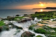 Stone Trench of Laomei Coast (*KUO CHUAN) Tags: road county light sea seaweed rock creek sunrise golden coast highway waves  north taiwan spray trench coastal taipei algae  surge tidal township seaview scour  shihmen  laomei ulva    taipeicounty       shicao