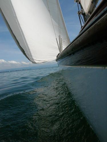 ariadne backbord