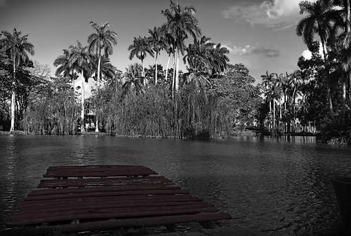 Idyllic Cuban Scenary........Santi Spiritus, Cuba by Rey Cuba