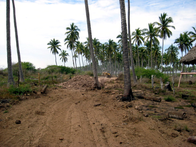 Progress on Tenacatita Road