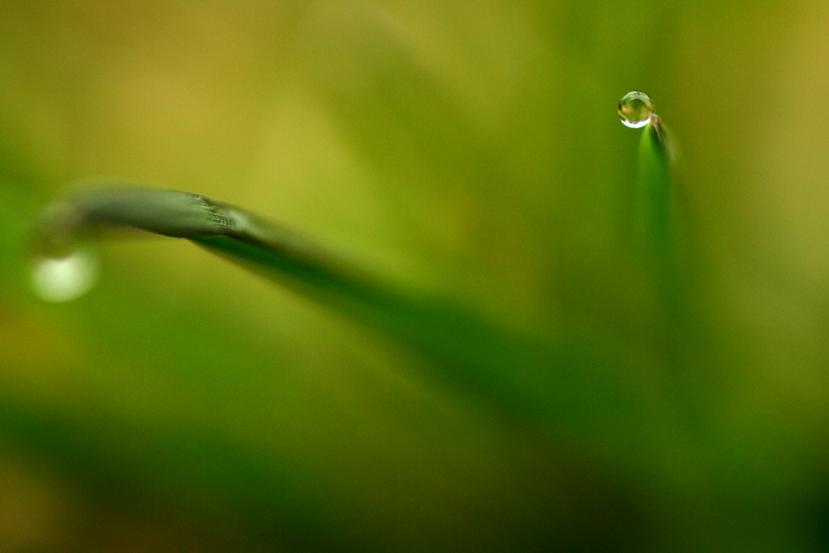 IMAGE: http://farm4.static.flickr.com/3258/2317011779_dab88561d7_o.jpg