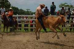 Giovanni rides again (strangecharm) Tags: easter guatemala rodeo photocontesttnc09