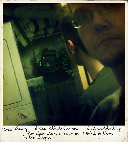 Dear Diary - 4/10/08