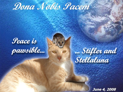 Peace is pawsible - Stifler