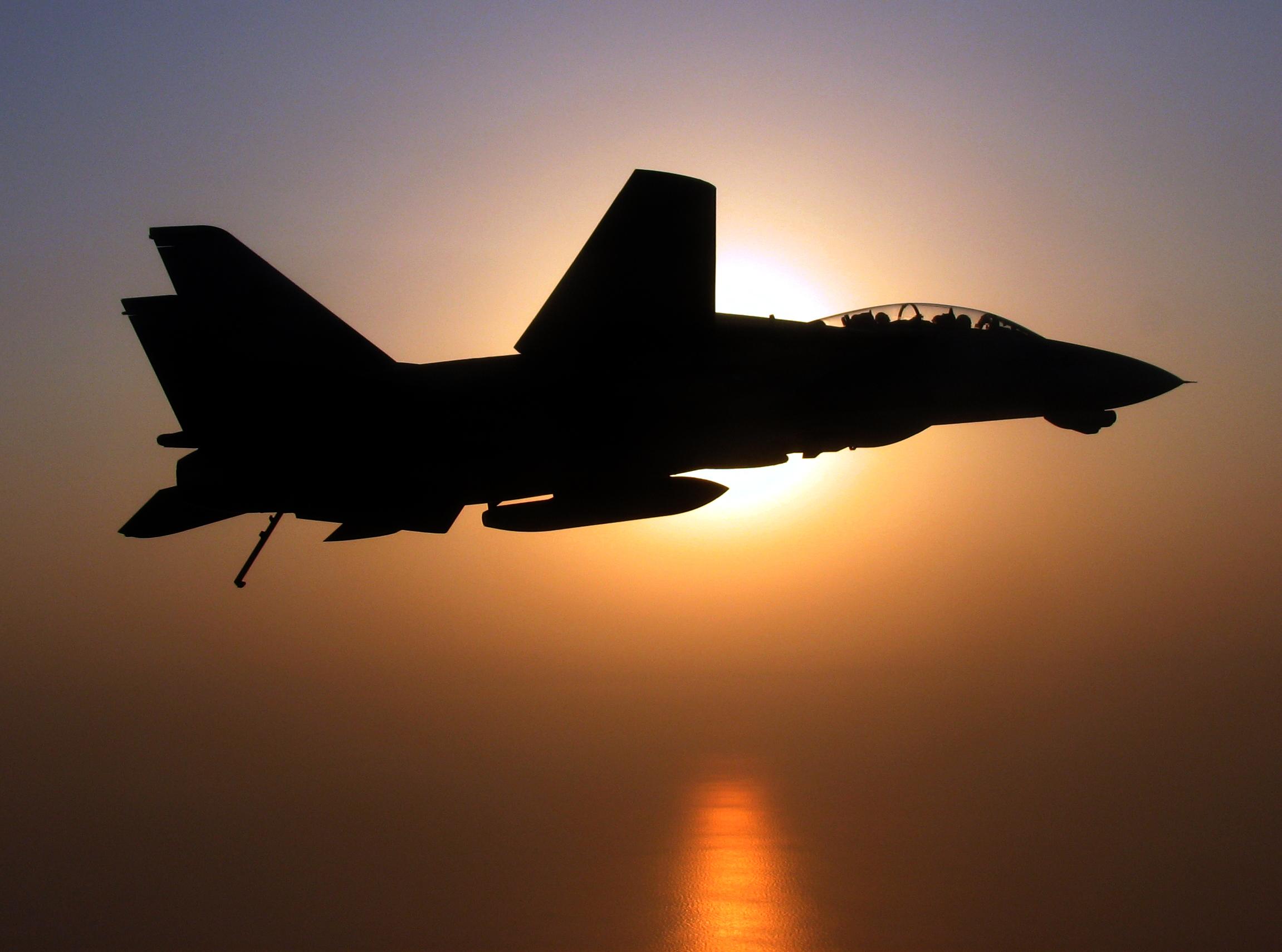 F 14 (戦闘機)の画像 p1_38