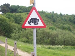 Warning : Frogs! (pete_hind) Tags: sign alnmouth signpost