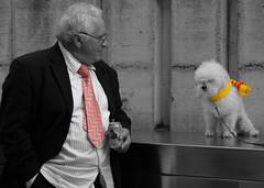 Approaches (▓▒░ ILMARTINO ░▒▓) Tags: pink dog man yellow cane scarf tie approach bassano sciarpa cravatta virtus anawesomeshot ysplix approccio
