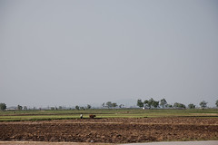 Chonsam Cooperative Farm. Anbyon County, North Korea. ((stephan)) Tags: northkorea dprk nordkorea