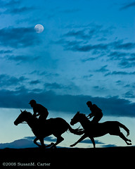 Moonlight Race (smcarterphotos) Tags: morning horses horse silhouette cheval jockey pferd equestrian equine