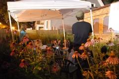 "Bill Daniel backyard screening of ""Who is Bozo Texino"" (Paper Boat Milwaukee) Tags: summer backyard milwaukee hobo whoisbozotexino billdaniel moviescreening paperboatgallery"