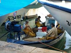 El fruto de la pesca (Javier Garcia Alarcon) Tags: puerto mar barco redes pescadores barcodepesca