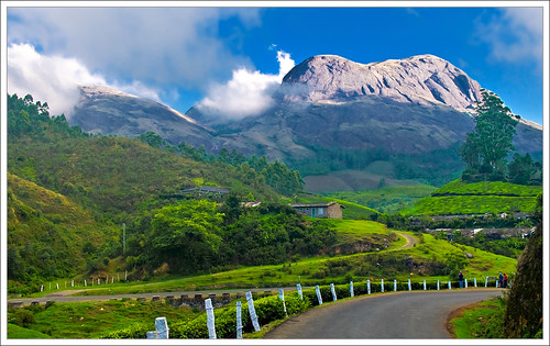 Munnar Hill Station photo
