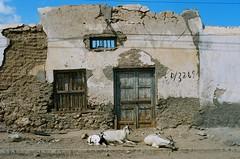 Berbera, Somaliland by tristam sparks, on Flickr