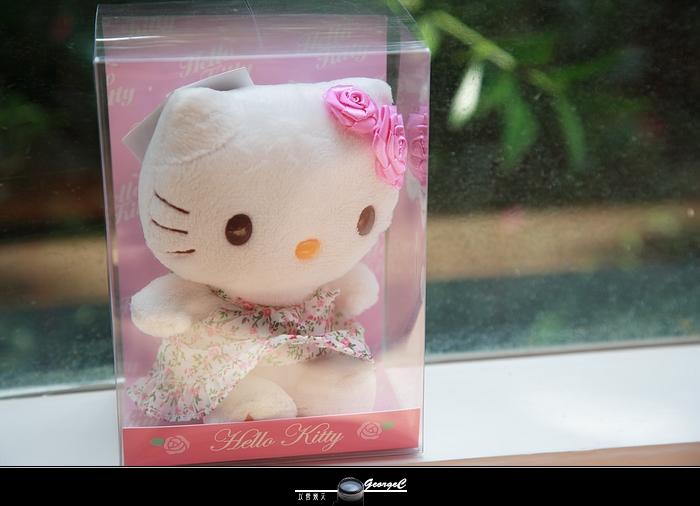 Kitty15.jpg