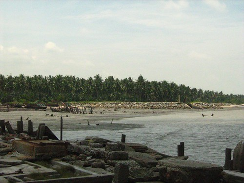 Ruins at Kuala Selangor 3