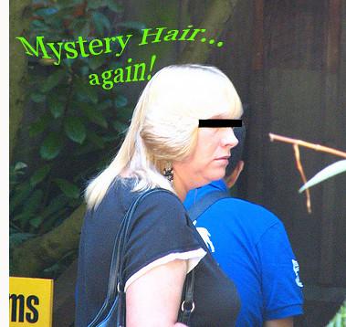 Mystery Hair