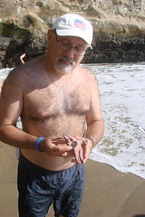 DT and the Starfish (canadianlookin) Tags: ocean california summer vacation santacruz holiday beach water fun pacific 2008 naturalbridges