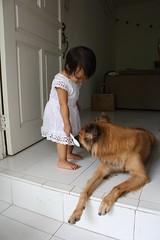 http://farm4.static.flickr.com/3258/2900544449_dd1c896492_m.jpg