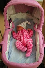 Stock Baby Photo