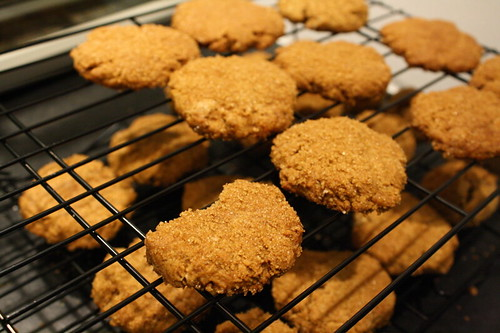 Mostly unsuccessful ginger cookies