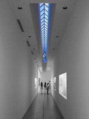 blue   museum