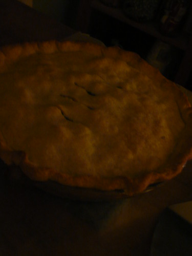 Chicken Pie in the dark