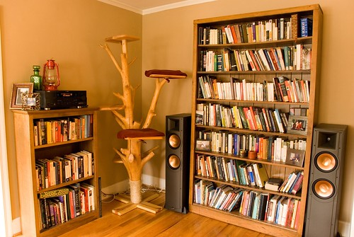 the speakers and cat tree