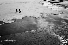 (Alieh) Tags: snow water river persian iran persia iranian  esfahan isfahan    zayandehrood  aliehs alieh       saadatpour snowypeopleproject