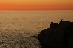 O último lance (_madmarx_) Tags: sea sky color colour sol stone canon mar agua rocks colours galicia puesta pontevedra xsi auga solpor bueu morrazo flickraward caboudra colourartaward platinumheartaward madmarx