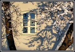 Art of the light and shadows (joningic) Tags: winter light snow window nature three iceland urbannature akureyri hafnarstræti goldstaraward snowonthree