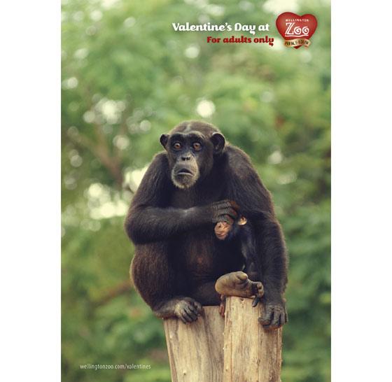 zoologico_san_valentin