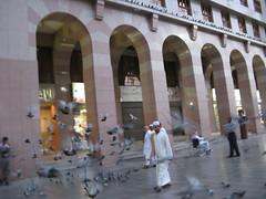 Pigeon in The Morning (Ikhlasul Amal) Tags: building bird pigeon minaret mosque pilgrimage masjid pilgrim